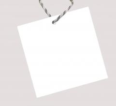 Blank Hang Tags